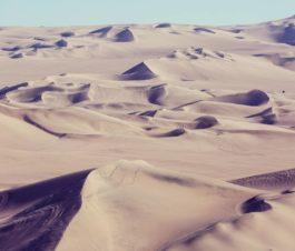 Conoce 1000 dunas, el rally raid de los supervivientes - Noticias logo 1000 dunas copy